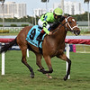 Play On wins the 2019 Melody of Colors Stakes at Gulfstream Park<br /> Coglianese Photos/Lauren KIng