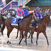 City of Light wins the 2019 Pegasus World Cup at Gulfstream Park<br /> Coglianese Photos/Lauren King