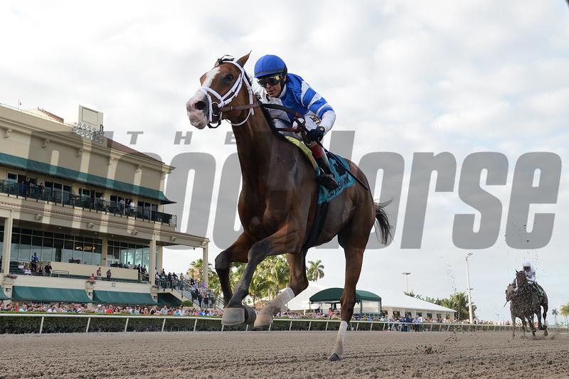 Prince Lucky, John Velazquez, Hal's Hope Stakes, G3, Gulfstream Park, February, 23, 2019, 100K