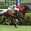 Leinster wins the 2019 Troy Stakes at Saratoga      <br /> Coglianese Photos/Chris Rahayel