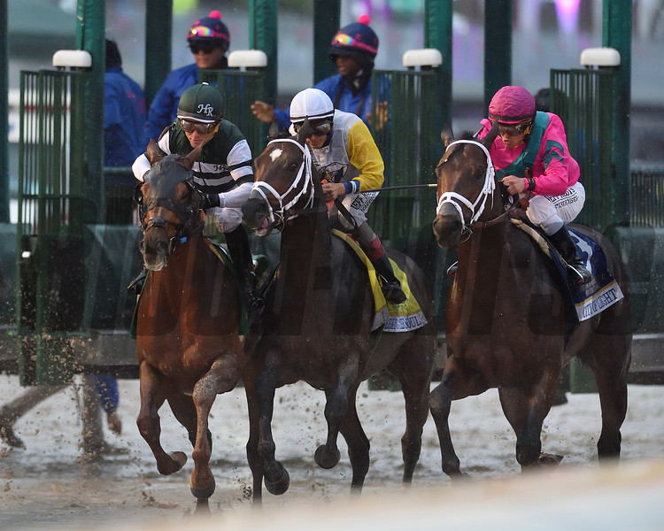 City of Light wins the 2019 Pegasus World Cup at Gulfstream Park<br /> Coglianese Photos/Kenny Martin