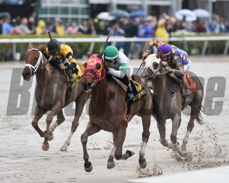 Aztec Sense wins the 2019 Fred W. Hooper Stakes at Gulfstream Park<br /> Coglianese Photos/Adam Mooshian