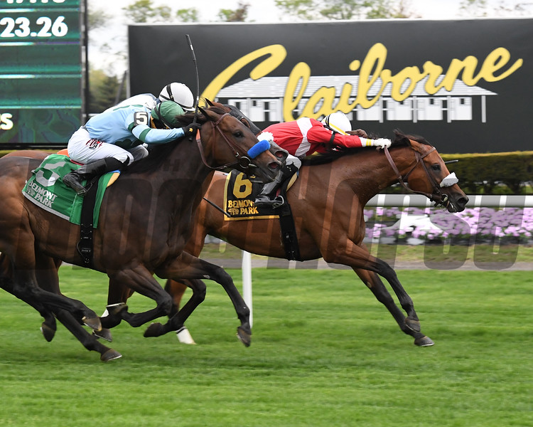 Fire Key wins the License Fee Stakes Sunday, April 28, 2019 at Belmont Park. Photo: Coglianese Photos/Chelsea Durand