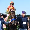 McKinzie wins the 2019 Whitney Stakes at Saratoga. Photo: Coglianese Photos/Janet Garaguso