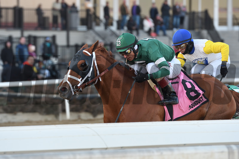 Vino Rosso wins the 2019 Stymie at Aqueduct<br /> Coglianese Photos/Annette Jasko