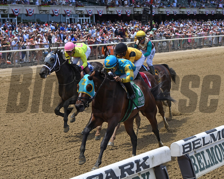 Majid wins the 2019 Easy Goer at Belmont Park<br /> Coglianese Photos/Chelsea Durand