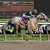 Highest Honors wins the 2019 Curlin Stakes<br /> Coglianese Photos/Susie Raisher