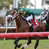 Speed Franco wins the 2018 Dania Beach Stakes<br /> Coglianese Photos/Kenny Martin