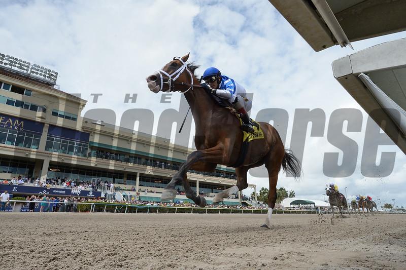 Prince Lucky wins the 2019 Gulfstream Park Mile<br /> Coglianese Photos