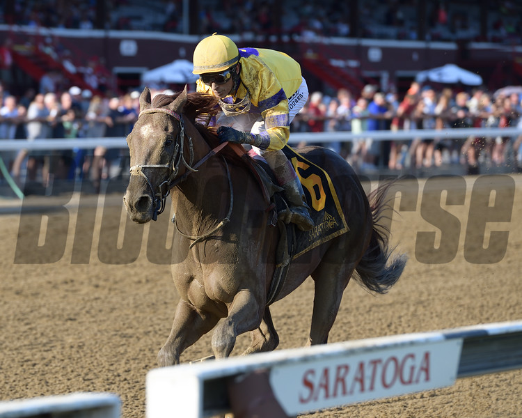King Zachary wins the 2019 Birdstone Stakes at Saratoga<br /> Coglianese Photos/Joe Labozzetta