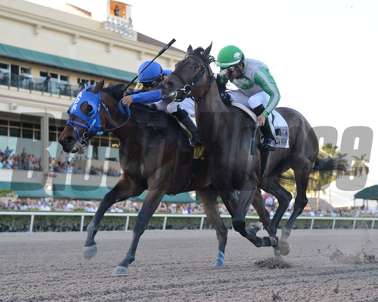 Jeltrin wins the 2019 Davona Dale Stakes at Gulfstream Park<br /> Coglianese Photos