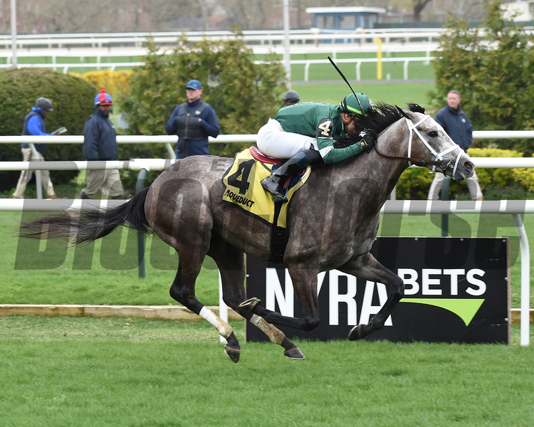 Clint Maroon wins the Woodhaven Stakes Saturday, April 20, 2019 at Aqueduct. Photo: Coglianese Photos