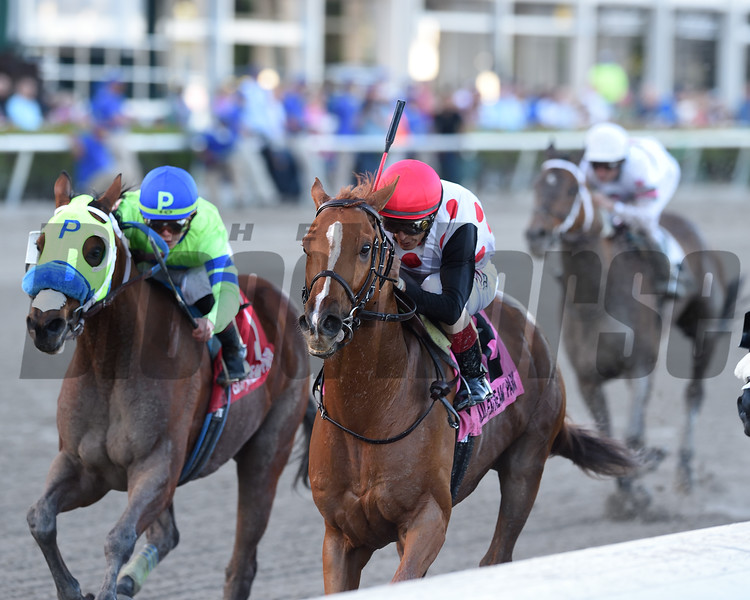Souper Tapit wins the 2019 Sunshine Millions Classic at Gulfstream Park<br /> Coglianese Photos/Kenny Martin