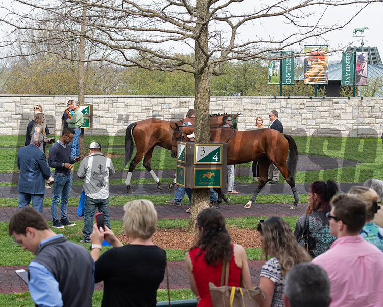 Paddock scene. Race 3 Our Alibi with John McKee and scenes at Keeneland in Lexington, Ky., on April 4, 2019