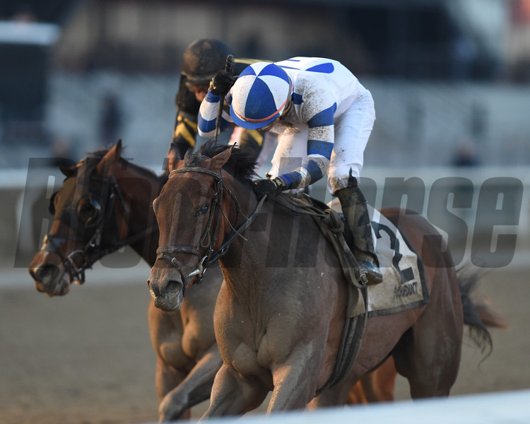 Espresso Shot wins the 2019 Busher Stakes at Aqueduct<br /> Coglianese Photos/Chelsea Durand