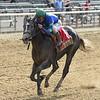 Royal Charlotte wins the 2019 Victory Ride at Belmont Park<br /> Coglianese Photos/Elsa Lorieul