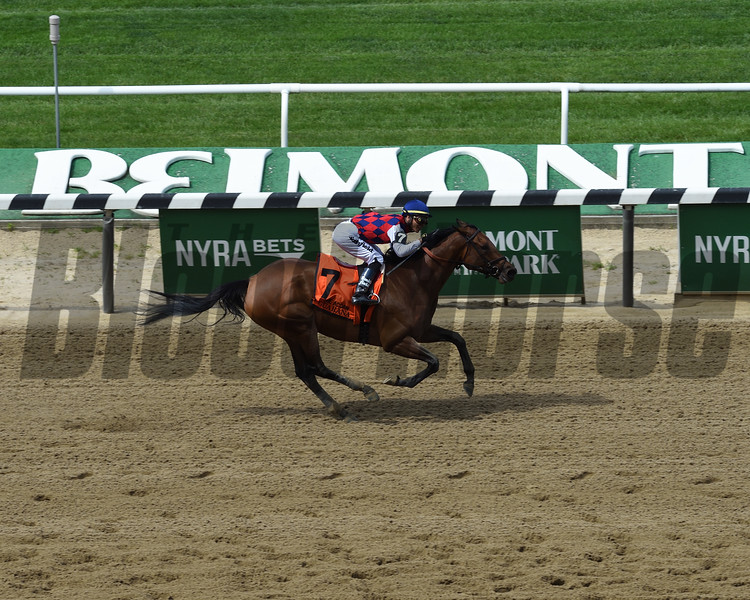 Guarana wins the 2019 Acorn Stakes at Belmont Park<br /> Coglianese Photos/Janet Garaguso