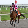 Maximum Security  wins the 2019 Florida Derby<br /> Coglianese Photos/Meg Griffin