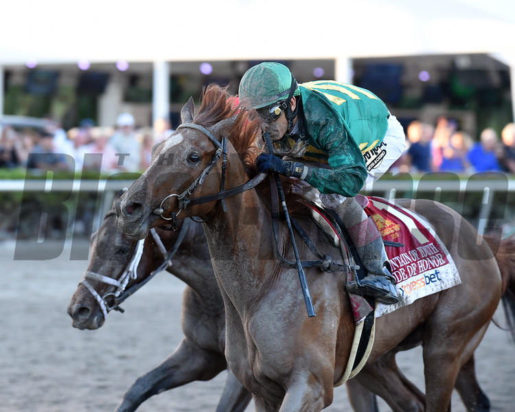 Code of Honor wins the 2019 Fountain of Youth Stakes at Gulfstream Park<br /> Coglianese Photos/Derbe Glass