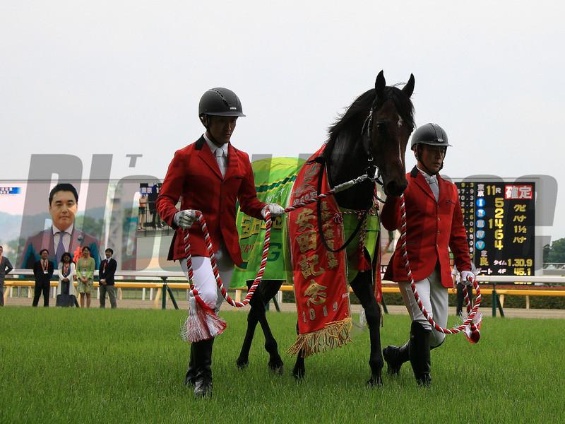 Indy Champ (JPN) wins 2019 Yasuda Kinen. Photo: Naoji Inada