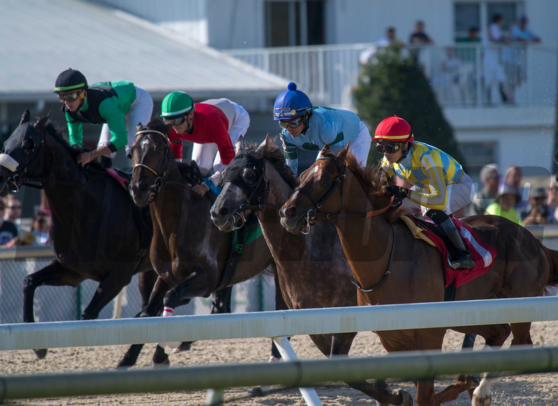 Flameaway with  Jose Ortiz  wins The Challenger Stakes ; @ Tampa Bay Downs in Oldsmar; Fl; March 9 2019; ©JoeDiOrio/Winningimages.biz