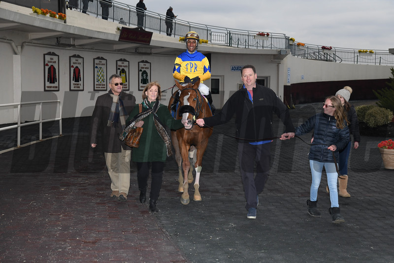Stonesintheroad wins the 2019 Franklin Square Stakes at Aqueduct<br /> Coglianese Photos