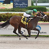 Lenzi's Lucky Lady wins the 2019 Golden Isles Stakes at Gulfstream Park<br /> Coglianese Photos/Lauren King