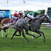 Significant Form wins the 2019 Intercontinental Stakes at Belmont Park<br /> Coglianese Photos/Susie Raisher
