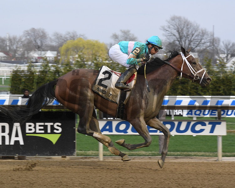Another Broad wins the Top Flight Invitational Stakes Saturday, April 13, 2019 at Aqueduct. Photo: Coglianese Photos/Susie Raisher