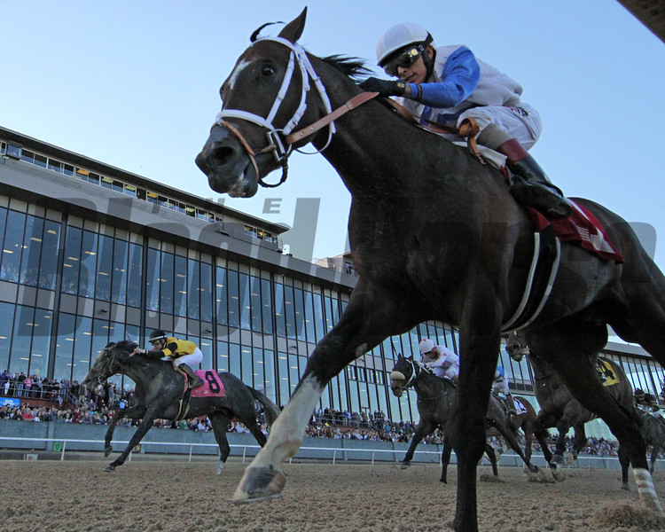 Market King with John Velazquez The Rebel (GII) (2nd Division) Oaklawn Park Chad B. Harmon