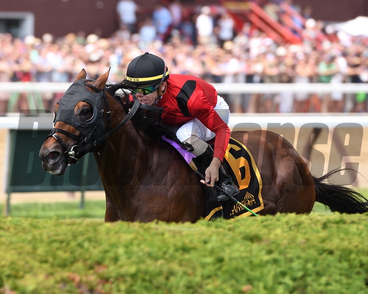 Leinster wins the 2019 Troy Stakes at Saratoga<br /> Coglianese Photos/Annette Jasko