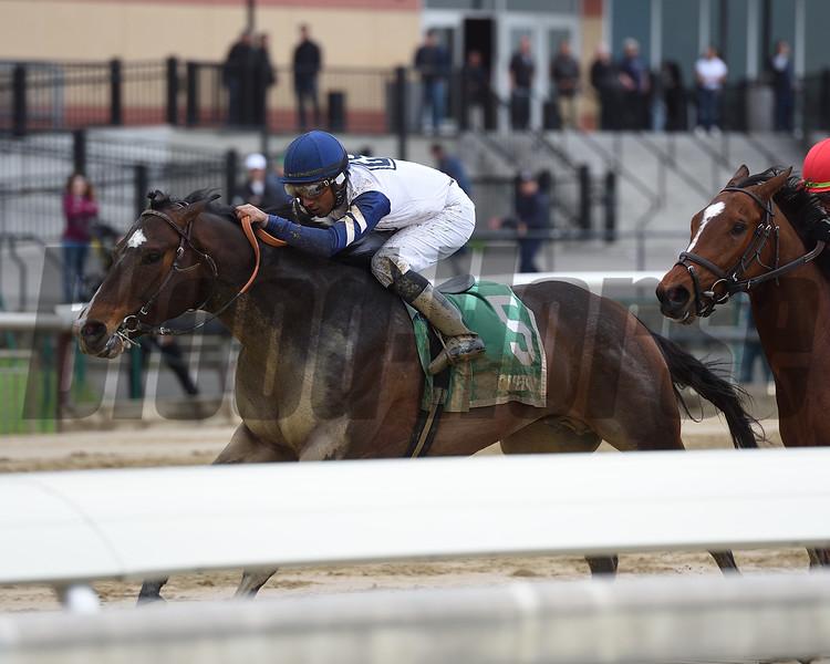 Funny Guy wins the New York Stallion Stakes Saturday, April 20, 2019 at Aqueduct. Photo: Coglianese Photos/Elsa Lorieul