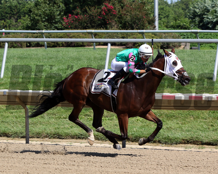 Altissimo with Christian Pilares win the Hockessin Stakes at Delaware Park on July 13, 2019. Photo By: Chad B. Harmon