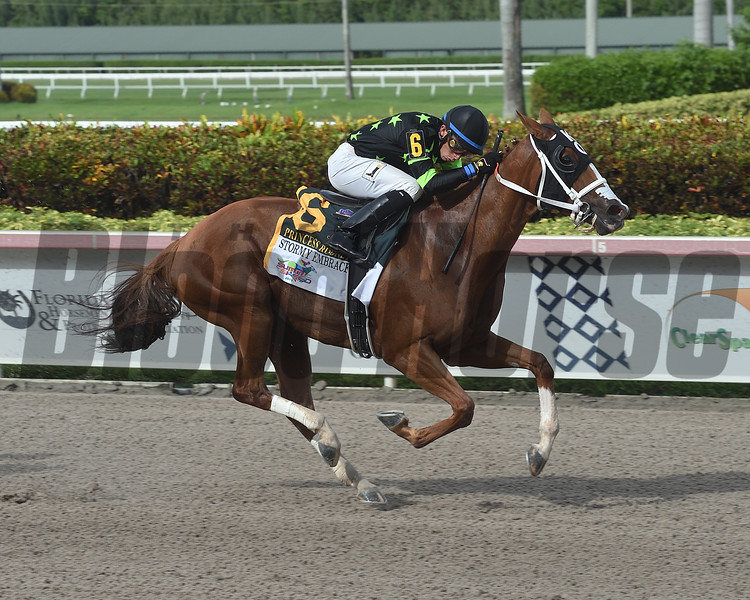 Stormy Embrace wins the 2019 Princess Rooney Stakes at Gulfstream Park  <br /> Coglianese Photos/Lauren King