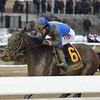 Royal Albert Hall wins the 2019 Bernardini Stakes at Aqueduct<br /> Coglianese Photos/Joe Labozzetta