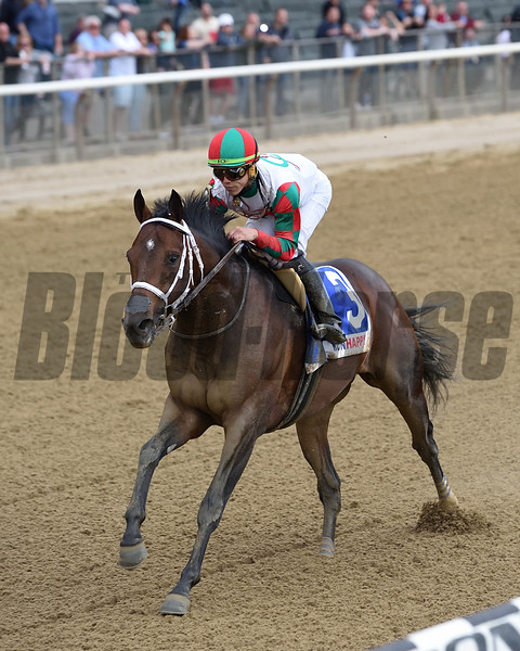 Firenze Fire wins the 2019 Runhappy Stakes at Belmont Park<br /> Coglianese Photos/Elsa Lorieul