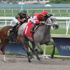 Kimura - Maiden Win, Gulfstream Park, July 7, 2019<br /> Coglianese Photos/Ryan Thompson