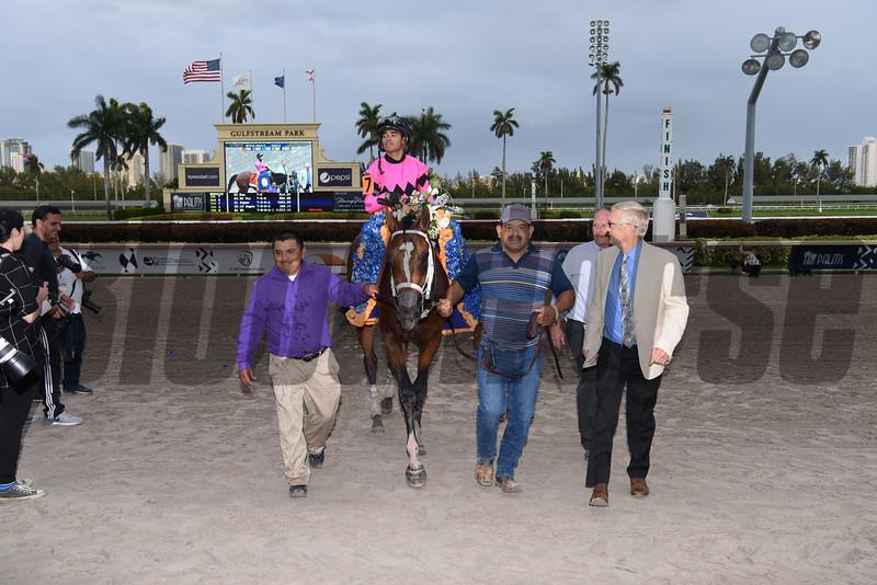 Maximum Security  wins the 2019 Florida Derby<br /> Coglianese Photos