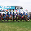 Aqueduct Turf Course, April 2019<br /> Coglianese Photos