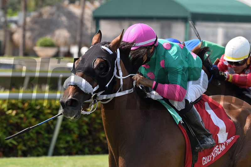 Salute the Colonel wins the 2019 Copingaway Stakes at Gulfstream Park<br /> Coglianese Photos/Ryan Thompson