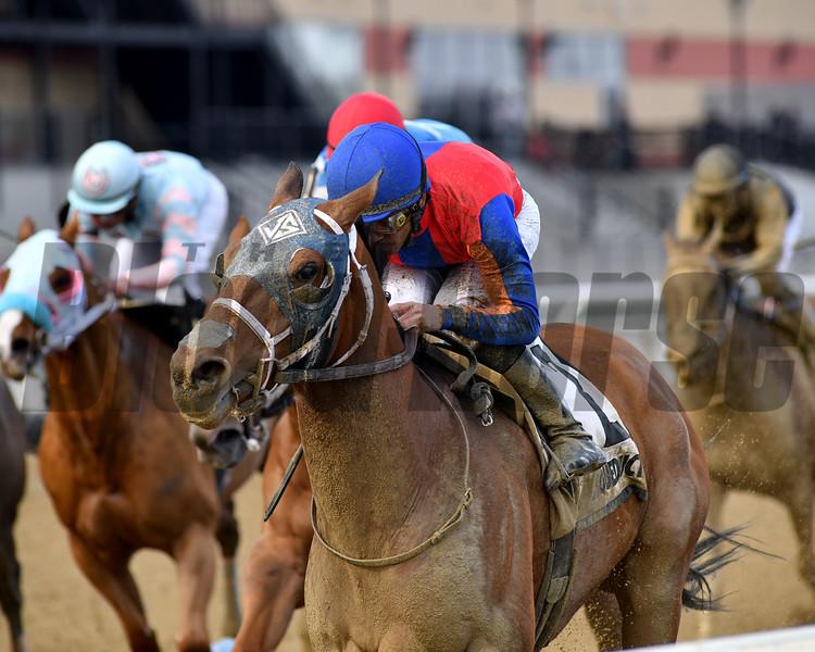 H Man wins the 2019 Kelly Kip Stakes at Aqueduct<br /> Coglianese Photos/Elsa Lorieul