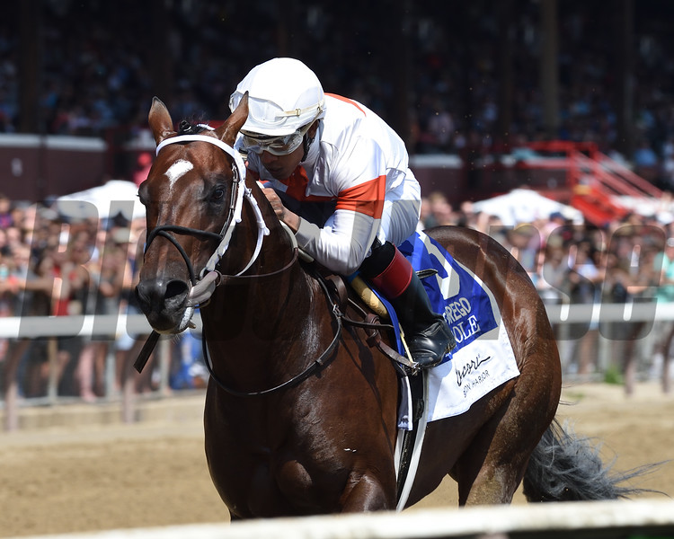 Mitole wins the 2019 Forego Stakes at Saratoga<br /> Coglianese Photos/Adam Mooshian