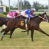 Ete Indien - Maiden Win, Gulfstream Park, September 13, 2019<br /> Coglianese Photos/Lauren King