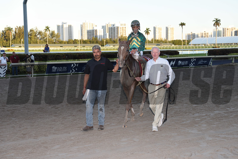 Code of Honor wins 2019 Fountain of Youth Stakes at Gulfstream Park. Photo: Coglianese Photos