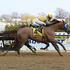 Potomac wins the 2019 More To Tell Stakes at Aqueduct<br /> Coglianese Photos/Chelsea Durand