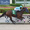 Soldollie - AOC, Gulfstream Park, September 13, 2019<br /> Coglianese Photos/Lauren King