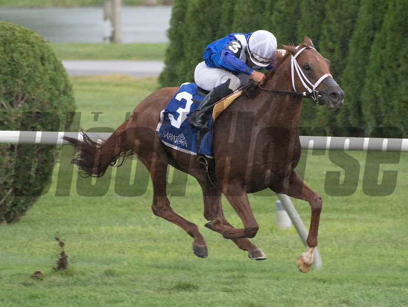 Qurbaan with jockey Joel Rosario wins the 61st running of the Bernard Baruch at the Saratoga Race Course Monday Sept. 2, 2019 in Saratoga Springs, N.Y.  Photo  by Skip Dickstein