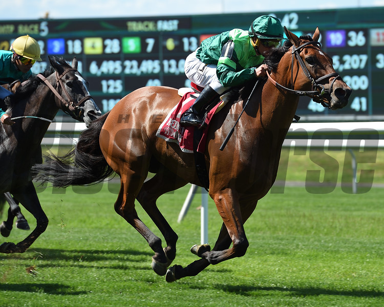 Fifty Five wins the Mount Vernon Stakes Monday, May 27, 2019 at Belmont Park. Photo: Coglianese Photos/Elsa Lorieul