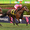 Zulu Alpha wins the 2019 W. L. McKnight Stakes at Gulfstream Park<br /> Coglianese Photos