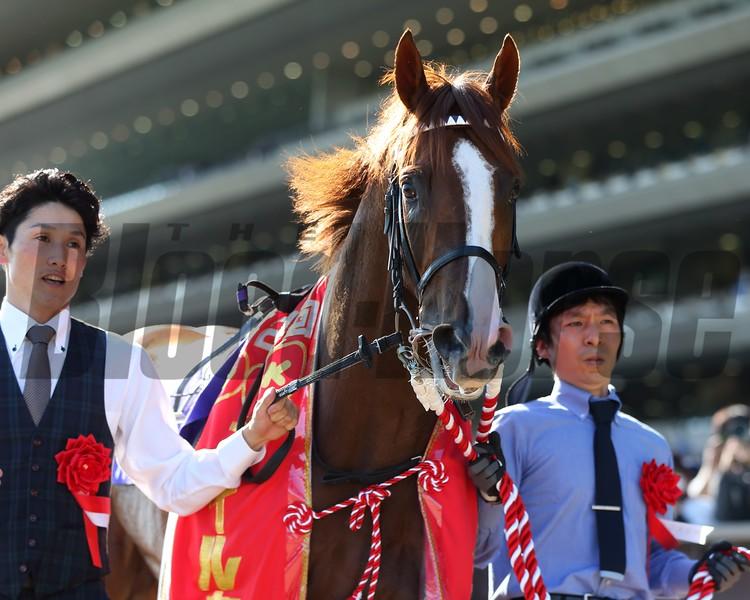 Admire Mars wins 2019 NHK Mile Cup<br /> Photo: Masakazu Takahashi
